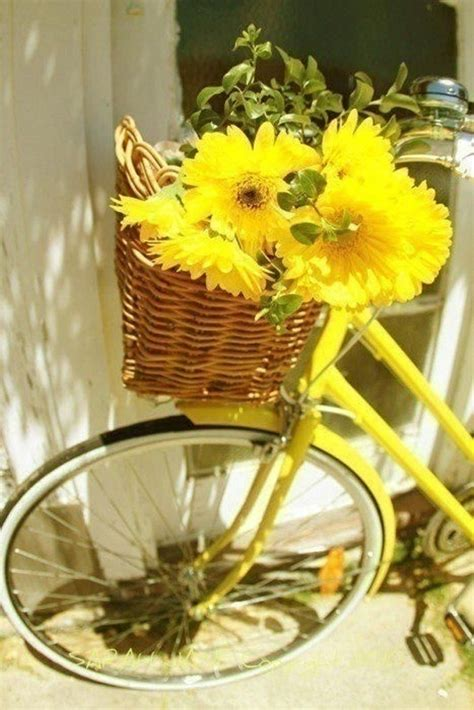 How To Incorporate Bicycle Decoration Trend In Your