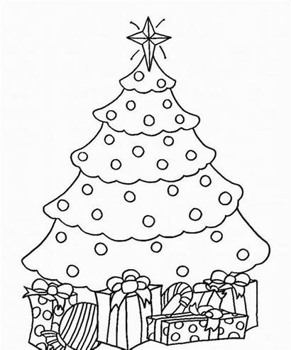 Coloring Tree Christmas Fir Pages Printable Drawing
