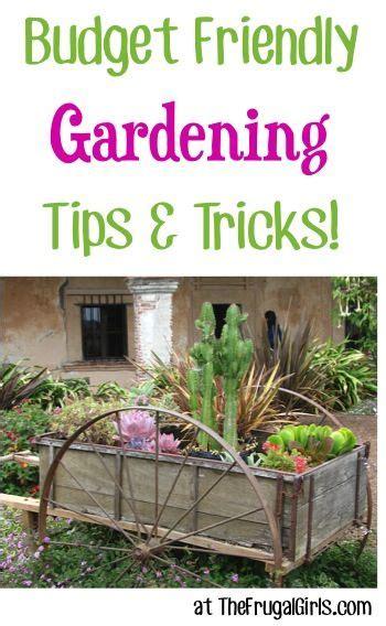 free gardening tips easy gardening tips and tricks the frugal girls bloglovin