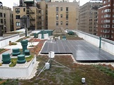 From roof to hearts, greening at Regis High School, New ...