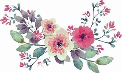 Watercolor Flower Flowers Floral Bouquet Watercolour Transparent