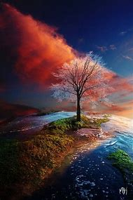 Amazing Nature iPhone Wallpapers