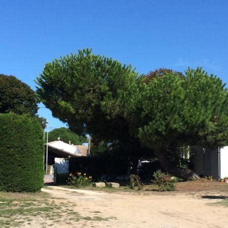 chambre d hote les tilleuls simply a brilliant place to stay photo de la ferme de