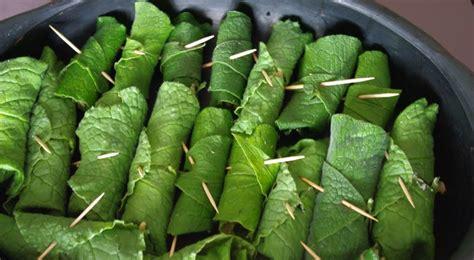 lot couteau de cuisine la cuisine du jardin recette de nems de consoude