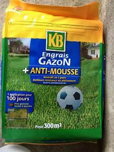 Engrais Gazon Naturel : anti mousse gazon ~ Premium-room.com Idées de Décoration