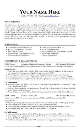 Professional Curriculum Vitae Format by Professional Cv Experts Work Professional Resume