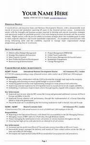 Format For Curriculum Vitae Sample Professional Cv Download Examples Cv Template Cv