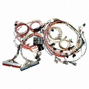 Ls1 Painless Wiring Kits : painless 1997 1998 gm ls1 engine harness ~ A.2002-acura-tl-radio.info Haus und Dekorationen