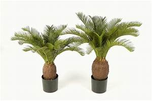 Wetterfeste Kunstpflanzen Balkon : cycas palme 70 cm ~ Michelbontemps.com Haus und Dekorationen