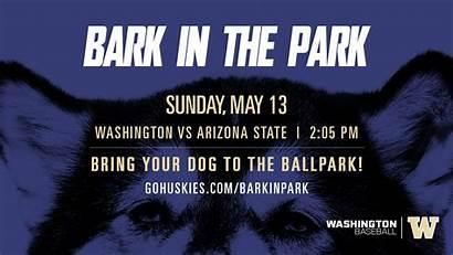 Huskies Uw Washington Husky Ballpark Mary St