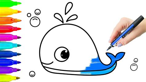 blue whale animals drawing  coloring  kids learning
