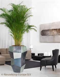 Plantes De Bureau Sans Soleil by Louer Des Plantes Plante Verte