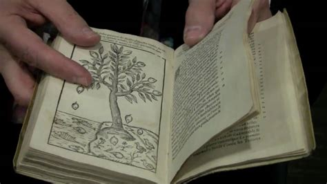 herbology book harry potter s herbology class with rare books youtube