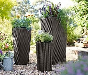Blumenkübel Bepflanzen Vorschläge : pflanzk bel f r den innen und au enbereich ~ Whattoseeinmadrid.com Haus und Dekorationen