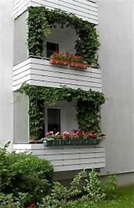 Hopfen Im Kübel Pflanzen : balkonbegr nung balkonbepflanzung mit balkonpflanzen ~ Markanthonyermac.com Haus und Dekorationen