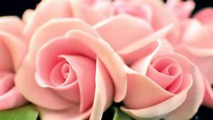 Easy Fondant Roses - Yeners Way