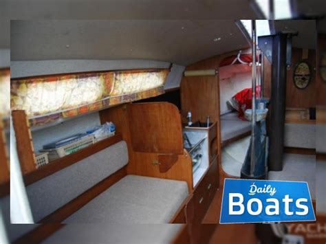 hunter delta   sale daily boats buy review