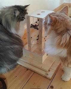 Verkleidung Für Katzen : intelligenzturm f r katzen intelligenzspielzeug f r katzen fummelbox fummelspiel f r katzen ~ Frokenaadalensverden.com Haus und Dekorationen