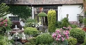 Begleitpflanzen Für Rosen : die sch nsten rosenbegleiter mein sch ner garten ~ Orissabook.com Haus und Dekorationen