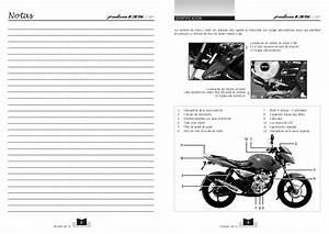 Diagram  Bajaj Pulsar Wiring Diagram Full Version Hd