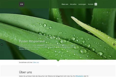 homepage erstellen kostenlos zur eigenen website