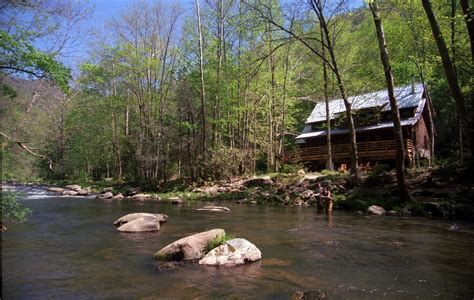 cabin fish a free daily visitor guide for the carolina