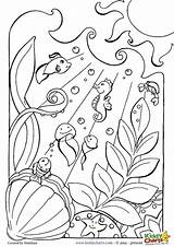 Ocean Coloring Pages Adults Print Printable Underwater Sea Colouring Creatures Floor Animals Everfreecoloring Sheets Animal Scene Printables Tennessee Getcolorings Shamrock sketch template