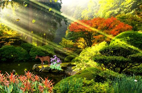 Animated Gif Nature Wallpapers - animated beautiful nature wallpaper wallpapersafari