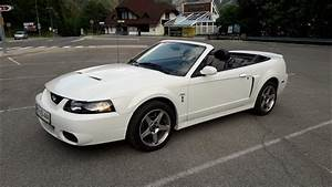 2003 Ford SVT Mustang Cobra Terminator Convertible in Oxford White FOR SALE! - sound and drive ...