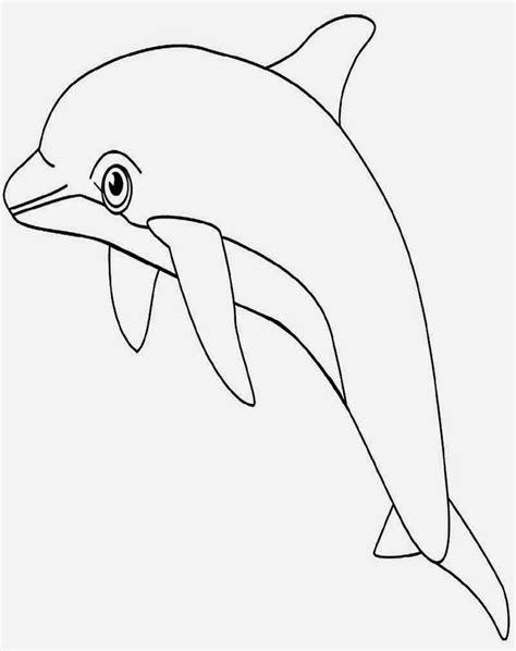 gambar mewarnai ikan hiu gambar mewarnai lucu