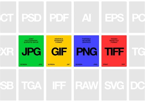 What Is The Best File Format For A Resume by 8 Best Images About Infographics For File Formats On