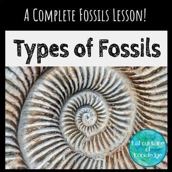 types  fossils lesson powerpoint notes worksheet