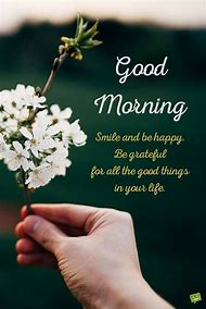 Best good morning greetings ideas and images on bing find what happy good morning quotes m4hsunfo
