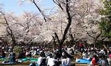 上野公園_上野公園介紹_上野公園地址和門票 - 東京攻略