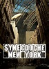 Synecdoche, New York (2008) BluRay 480p & 720p - 668 Movie