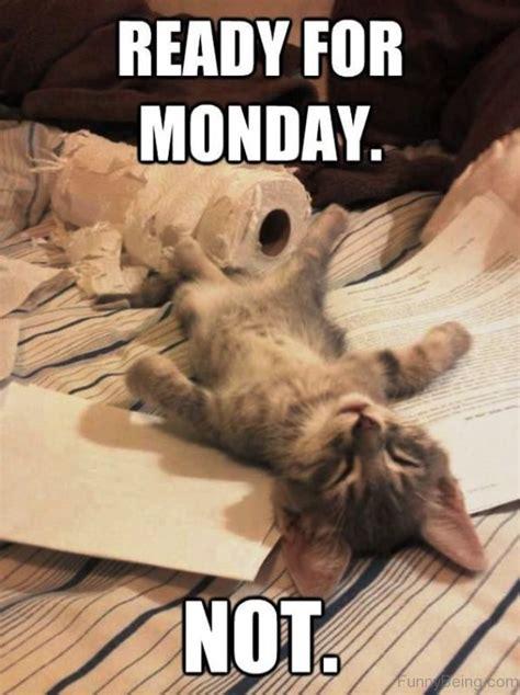 Monday Memes 60 Best Collection Monday Memes