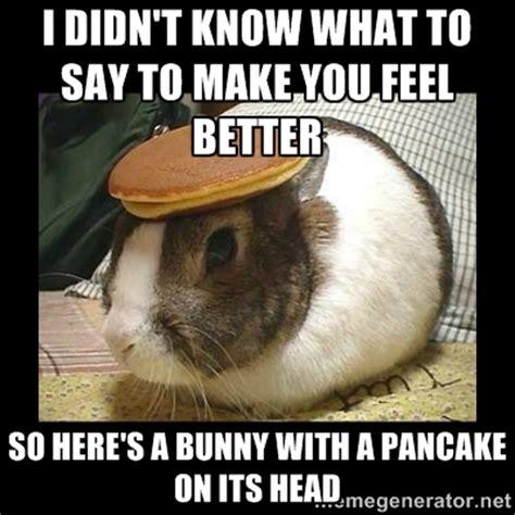 Funny Feel Better Memes - make you feel better memes image memes at relatably com