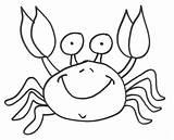 Crab Coloring Fiddler Colorear Desene Colorat Cangrejo Cu Crabi Crabs Animal Mar Caranguejo Feliz Dibujo Ketam Encek Cangrejos Dibujos Hermie sketch template