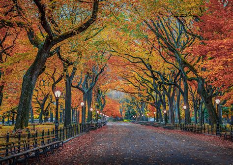 Fall Backgrounds New York by Pictures New York City Usa Nature Autumn Parks Trees
