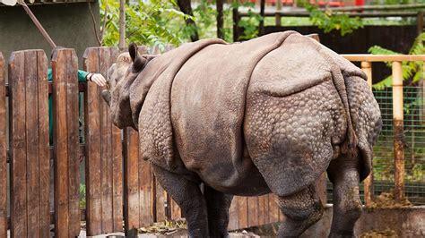 zoopfleger fassungslos sie koennen nicht glauben