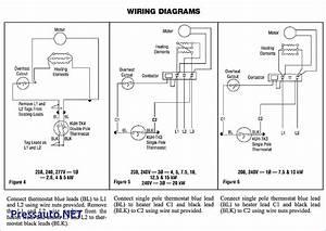 Bulldog Security Vehicle Wiring Diagram Unique In 2020