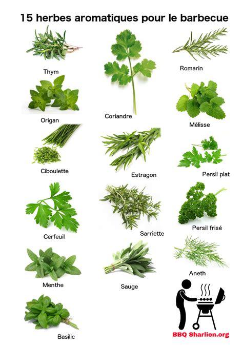 herbes aromatiques en cuisine 15 herbes aromatiques fraiches pour les grillades