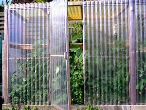 Gurken Pflanzen Gewächshaus : gurken im gew chshaus foto bild pflanzen pilze flechten rankgew chse natur bilder auf ~ Pilothousefishingboats.com Haus und Dekorationen
