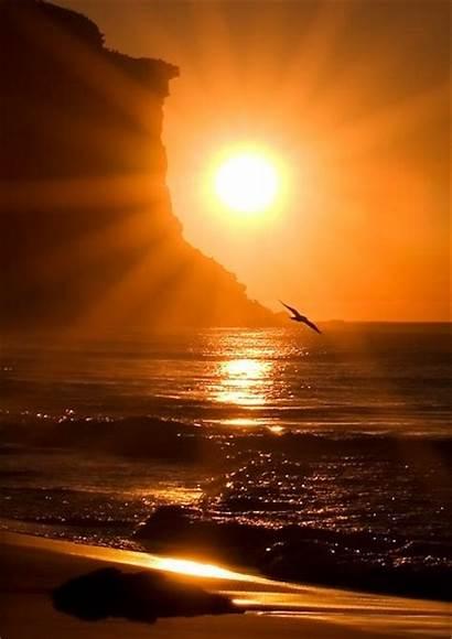 Sunrise Sunset Sun Beach Amazing Ocean Morning