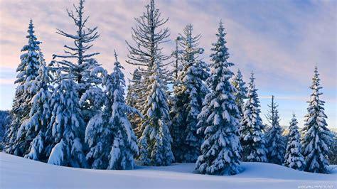 Winter Wallpaper Desktop by Winter Desktop Wallpapers 183 Wallpapertag