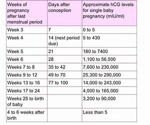 Hcg Levels For Twins Babycenter