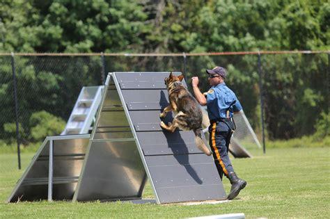 Mercer County's police dogs get new training center - nj.com