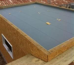 Toit En Bois : maison ossature bois avec toit terrasse boismaison ~ Melissatoandfro.com Idées de Décoration