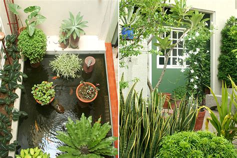 This is how to enhance your small garden space. Pool landscaping ideas nz, outdoor kitchens quebec, small ...