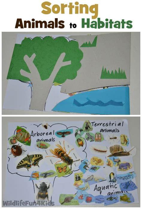 best 25 animal habitats ideas on habitats